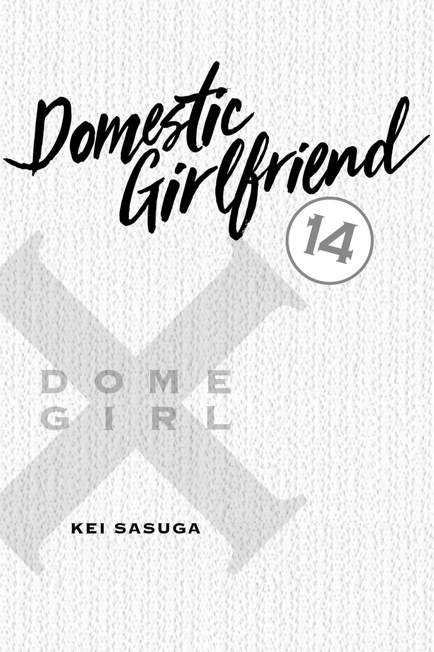 Domestic Girlfriend, Chapter 125 Always Together image 002