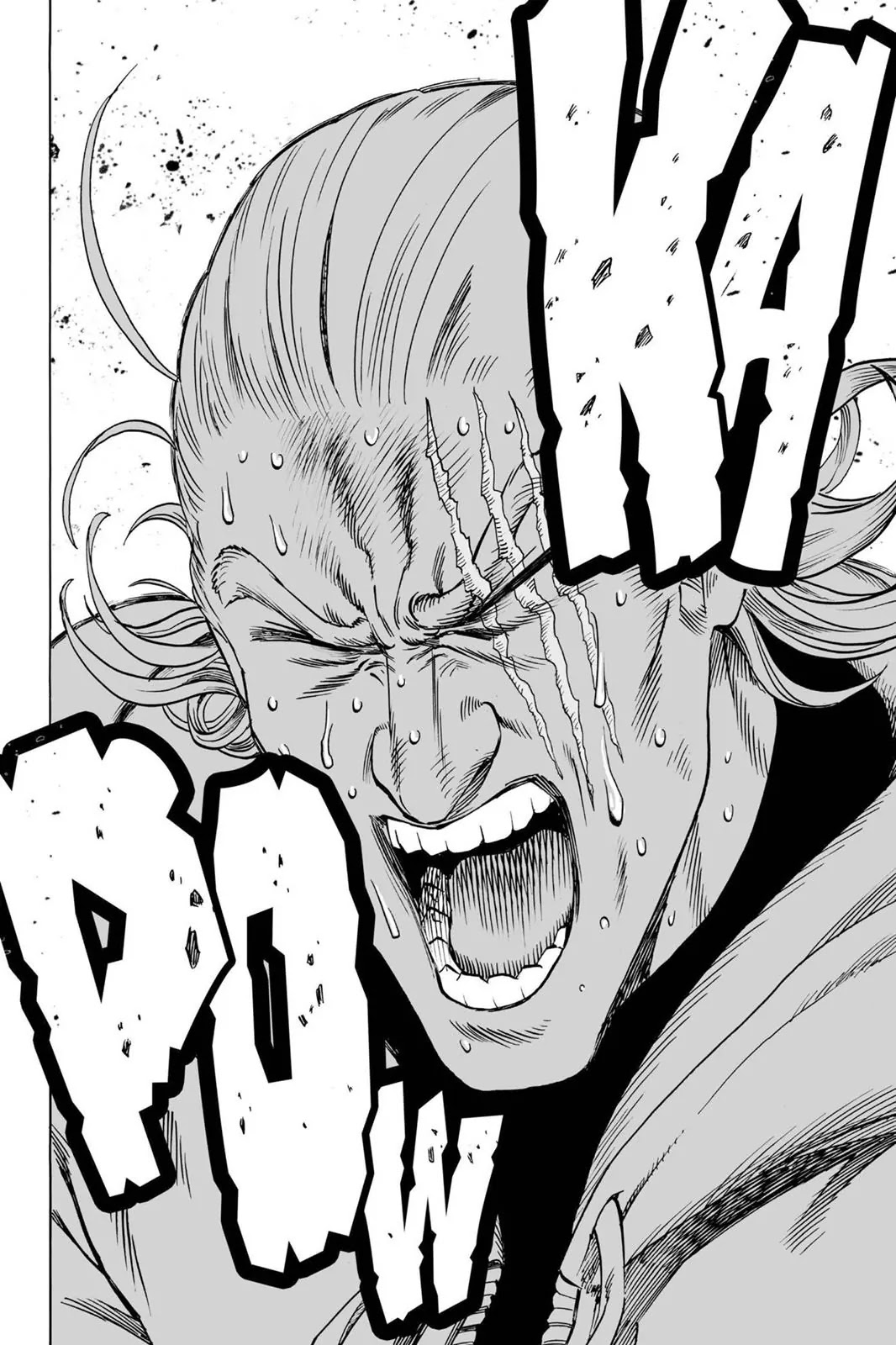 One Punch Man, Chapter Onepunch-Man 39 image 009