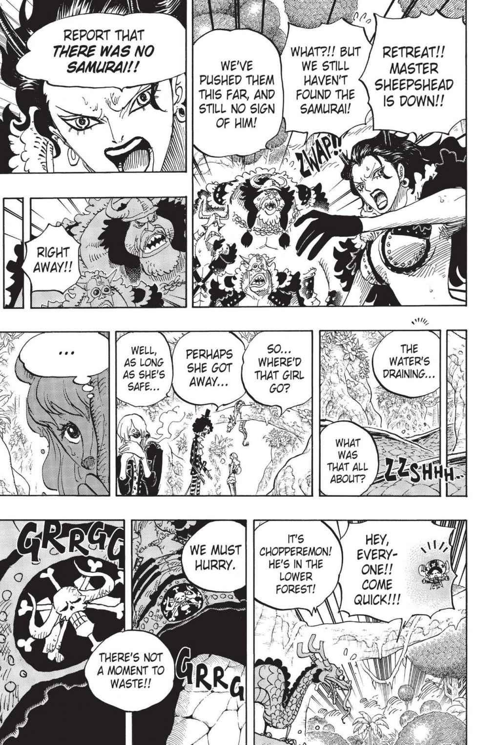 One Piece, Chapter 795 image 009