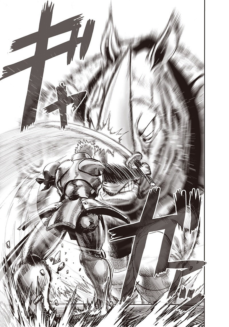One Punch Man, Chapter Onepunch-Man 94 image 106